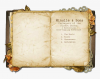 265-2652330_old-open-book-png-transparent-png.png.png