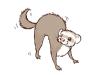 fox war dance.png