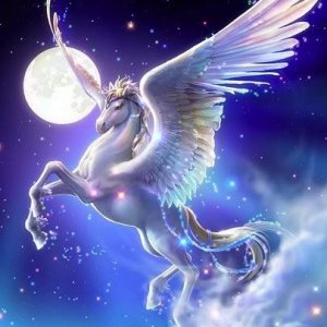 Starry Pegasus 200x300 ratio cropped.jpg