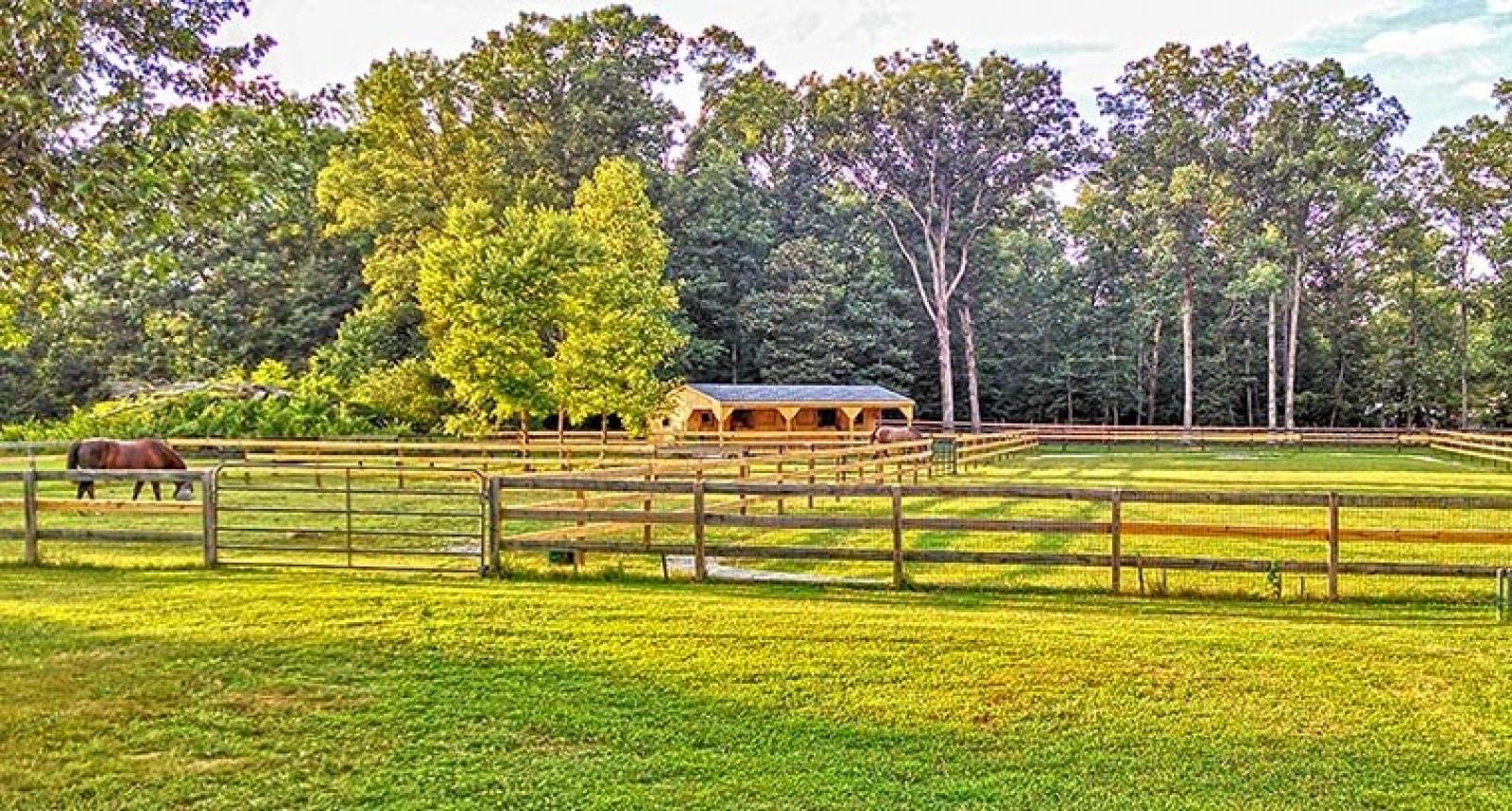 Horse-barns-shed-row-in-12x36-with-10-foot-overhang-wide